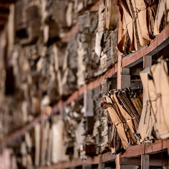destruction des archives